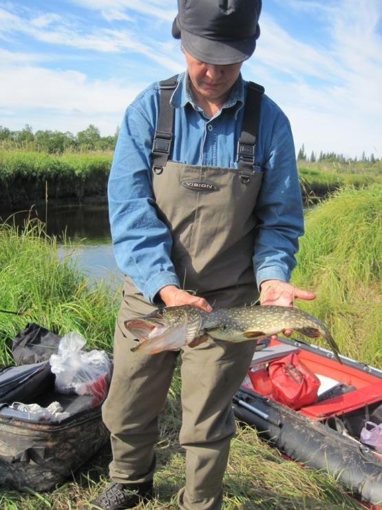 Рыбалка охота туризм на земле архангельской