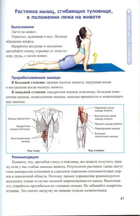 Кака сузить мышцы влагалища
