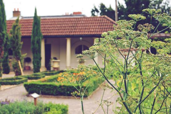 Римский садик
